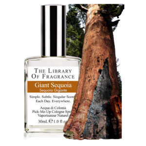 SEQUOIA GEANT PARFUM THE LIBRARY OF FRAGRANCE
