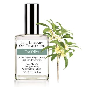 ARBRE A THE PARFUM THE LIBRARY OF FRAGRANCE